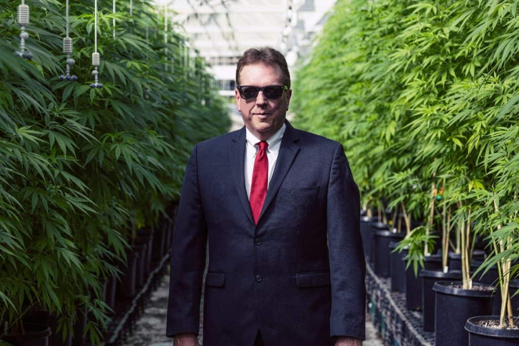 is-it-illegal-to-own-weed-stocks